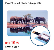 Card Shaped Flash Drive (4 GB)