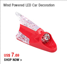 Wind Powered LED Car Decoration