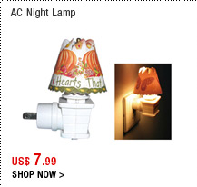 AC Night Lamp