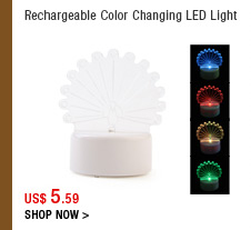 Rechargeable Color Changing LED Light