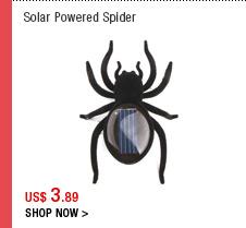 Solar Powered Spider