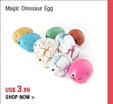 Magic Dinosaur Egg