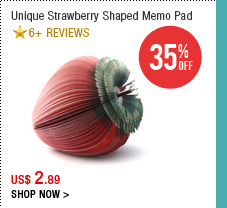 Unique Strawberry Shaped Memo Pad