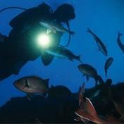 Lanternas de Mergulho