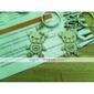 amateurs inoxydable porte-clés (ours / 2-pièces)