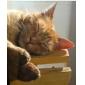 Bloedsomloop bevorderende en ontspannende hoofdhuid massage-hulpmiddel (willekeurige kleur)