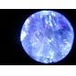 100x microscopio portátil con LED de iluminación (2 * aa)