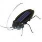 soldrevne kakerlakk
