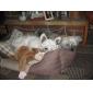 желтый и черный жакет для собак и кошек (XS-XXL)