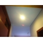 3W GU10 LED-spotlampen MR16 60 SMD 3528 240 lm Warm wit AC 220-240 V