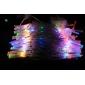 10M 100-LED Colorful Light 8-Mode LED String Lamp (220V)