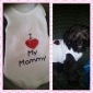 Dear Mom Weste für Hunde (XS-M)