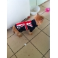 United Kingdom Flag Style Sweater for Dogs (XS-XL, Blue)