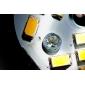E26/E27 W 15 SMD 5630 260 LM Warm White B Globe Bulbs V