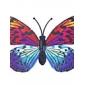 Glow-in-Dark Butterfly(Style Assorted)