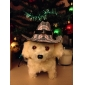 Cowboy Star Hat for Small Dogs Cats (Assorted Colors)