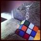 Кубики-головоломки Брелок черный увядает Пластик