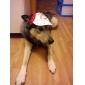 спортивная шапка для собак (XS-XL, разных цветов)