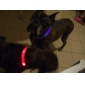 Cat Dog Collar LED Lights Adjustable/Retractable Solid Red Green Blue Yellow Nylon