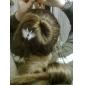 esponja faixa de cabelo