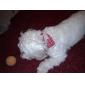 Coleira em Forma de Lenço para Cachorro (Várias Cores)