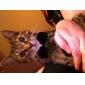 katten / honden Kraag Verstelbaar/Uitschuifbaar / Vlinderdas / Strass Zwart Textiel