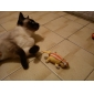 Sorrindo Esquilo Toy Catnip estilo para gato