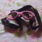 Dog / Cat Sunglasses White / Pink / Yellow Spring/Fall Holiday