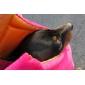 Стильная сумка для перевозки собак и кошек (до 4 кг, розовый)