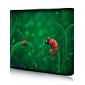 "Ladybug Baby Neoprene Laptop Sleeve Case for 10-15"" iPad MacBook Dell HP Acer Samsung"