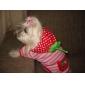 Собаки Носки На каждый день Сохраняет тепло Зима Весна/осень Полоски Оранжевый Зеленый Синий Розовый Хлопок