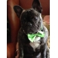 Коты Собаки Ошейники Регулируется/Выдвижной Бант Красный Черный Белый Зеленый Синий Розовый Желтый Текстиль