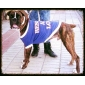 Cães Camiseta Azul Roupas para Cães Verão Primavera/Outono Carta e Número Casual