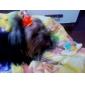 녹색 수세미 애완 동물 장난감을 청소 슬리퍼 스타일의 이빨