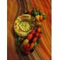 Women's Wood Analog Quartz Bracelet Watch (Multi-Colored)
