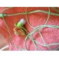 Japanese Style Stereo In-Ear Earphone (Assorted Colors)