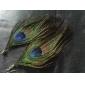 Women's  Bohemian Ethnic Peacock Feather Earrings