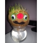 DIY Growing Grass Head Doll
