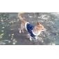 legal da camisa ensolarado terylene estilo calça jeans para cães (xs-xl)