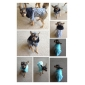 Dog Shirt / T-Shirt Red Purple Dog Clothes Winter Spring/Fall Solid Casual/Daily