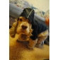 Hot Sale! Hooded Raincoat for Dogs (Assorted colors)