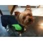 alkalmi farmer stílusú cipő kutyáknak (XS-XL, vegyes színek)