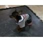 Perros Pantalones Gris Invierno Cráneos / Letra y Número