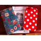 Back & Front Dull Polish Screen Guard Protector with Cleaning Cloth for iPhone 4S