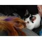 Gatos Juguetes Rompe Cabezas / Juguetes con Plumas Campana Plástico Rojo