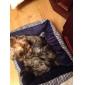 cama de algodão confortável stripe osso padrão para cães e gatos