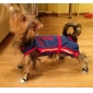 Scarpe in denim per cani (XS-XL) - Colori assortiti