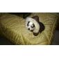 roztomilý vločka vzor double face kabát s kožešinovým límcem pro psy (různých barvách, XS-XL)