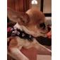 Bloeiwijze knop Invoegen Halsband met belletje en de Kant voor honden (assorti kleur)