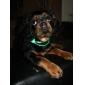 einstellbar stilvolle Nacht Sicherheit LED-Blitz Halsband für Hunde (sortierte Farbe, Länge: 70cm / 27inch)